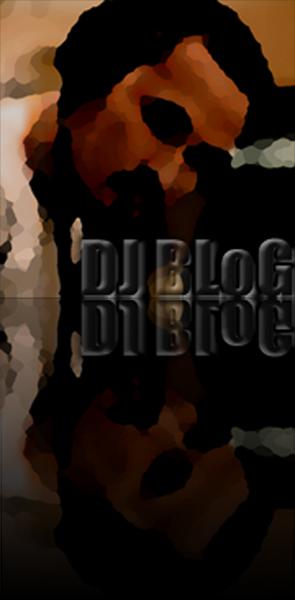 djblog2013_reflect